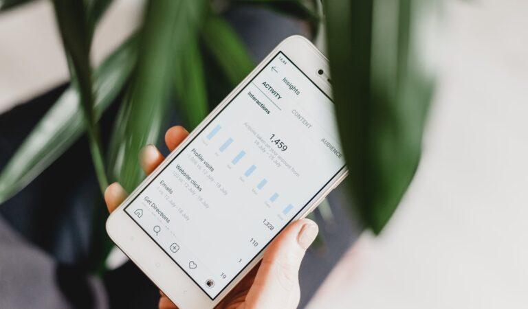 Honest Review: Instagram Marketing Service Ingramer
